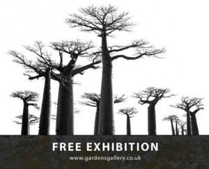 gardens gallery flyer 2012